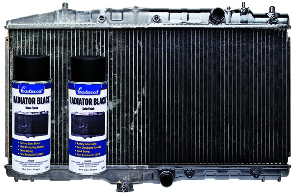 Eastwood Radiator Black Paint